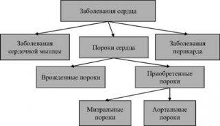 Сортировка и структурирование данных: Большинство собранных